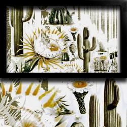 botanik-kaktus-kirlent-6-4.jpg